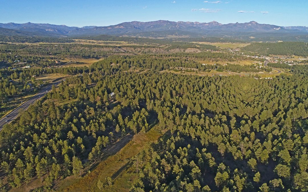 Spectacular 76 Acre Investment Opportunity  in Southwest Colorado – 1490B W HWY 160, Pagosa Springs