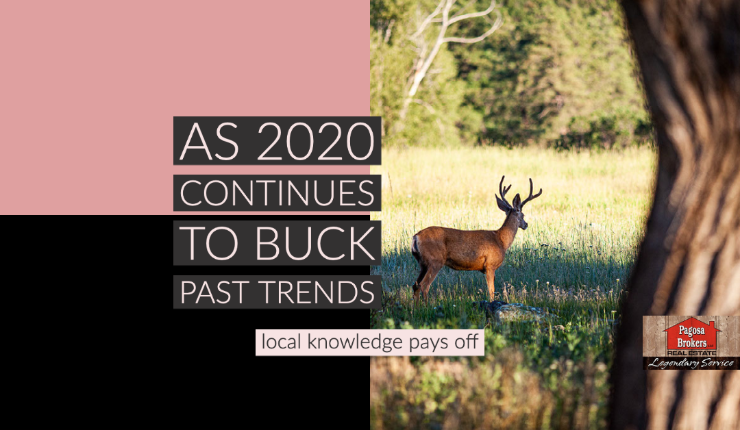 Bucking Trends; Fall Housing Market Finds 2020 Twist